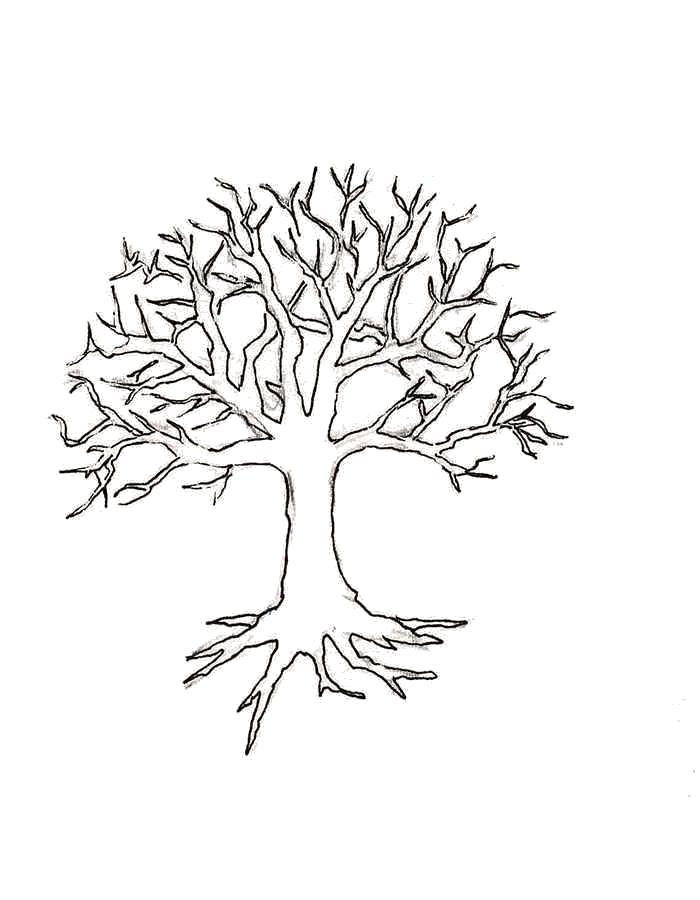 Название: Раскраска Раскраска дерево. Категория: Контуры дервеьев. Теги: дерево.