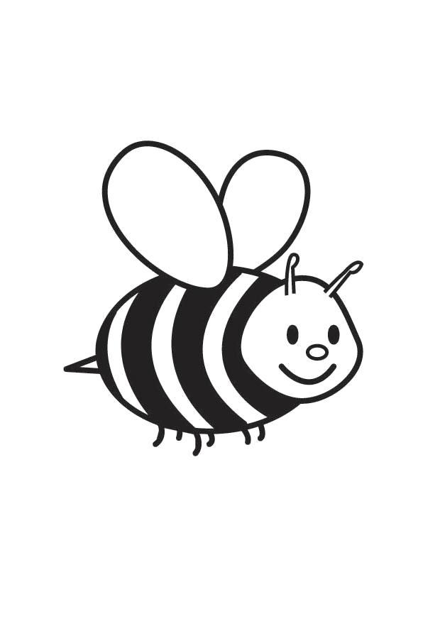 Раскраска Пчела. Насекомые