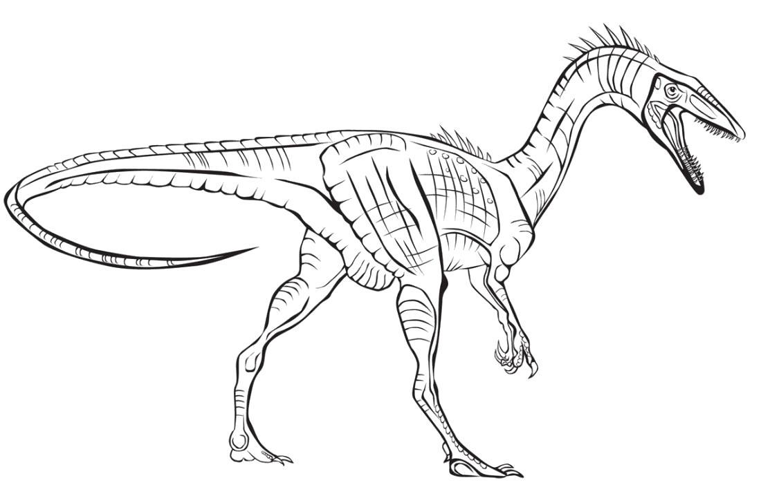 Раскраска  динозавры, мощный дино. Скачать динозавр.  Распечатать динозавр