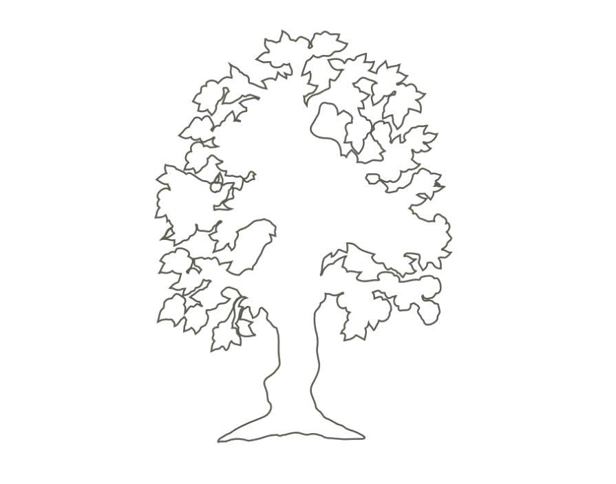 Раскраска Контур дерева . Контур
