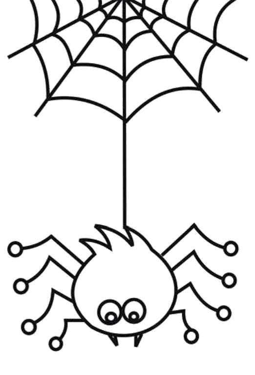Раскраска  паук и паутина.. Скачать ужасы.  Распечатать Хэллоуин
