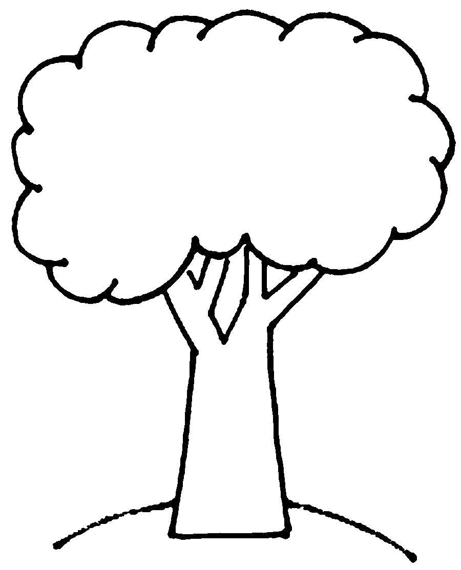 Картинка дерева раскраска для детей