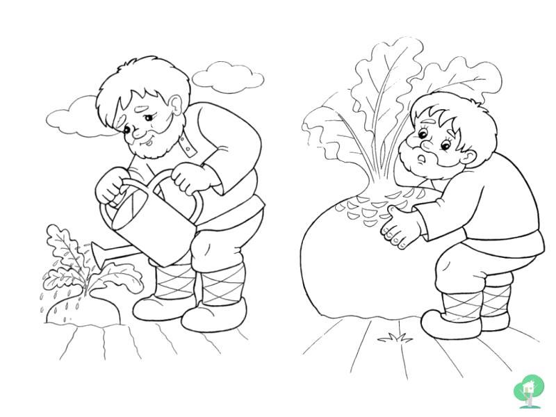Раскраска русская народная сказка репка читать онлайн с картинками посадил деде репку. Скачать репка.  Распечатать сказки