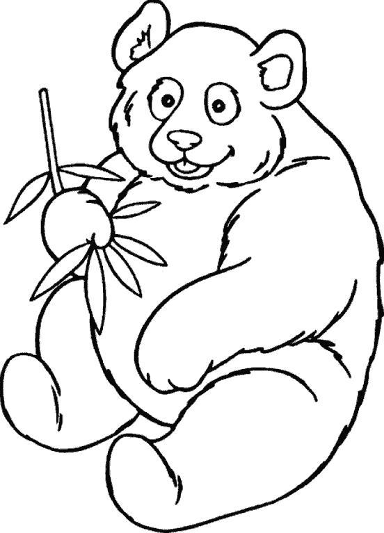 Раскраска Мишка Панда. Мишка