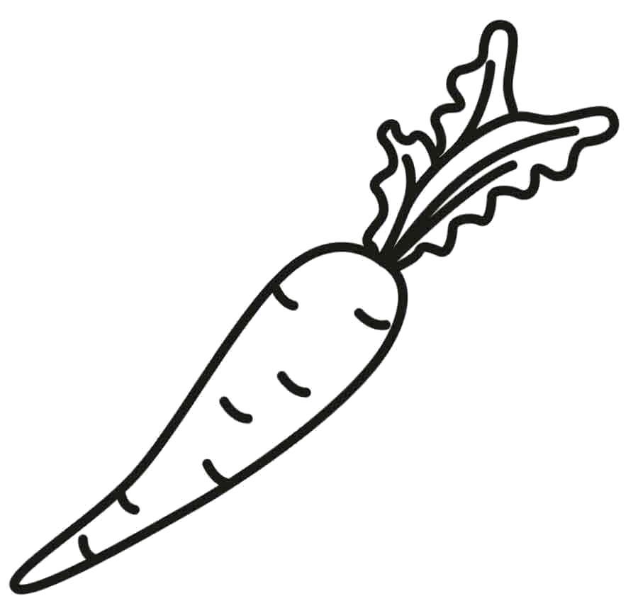 Раскраски овощи, Скачать раскраски хорошего качества.