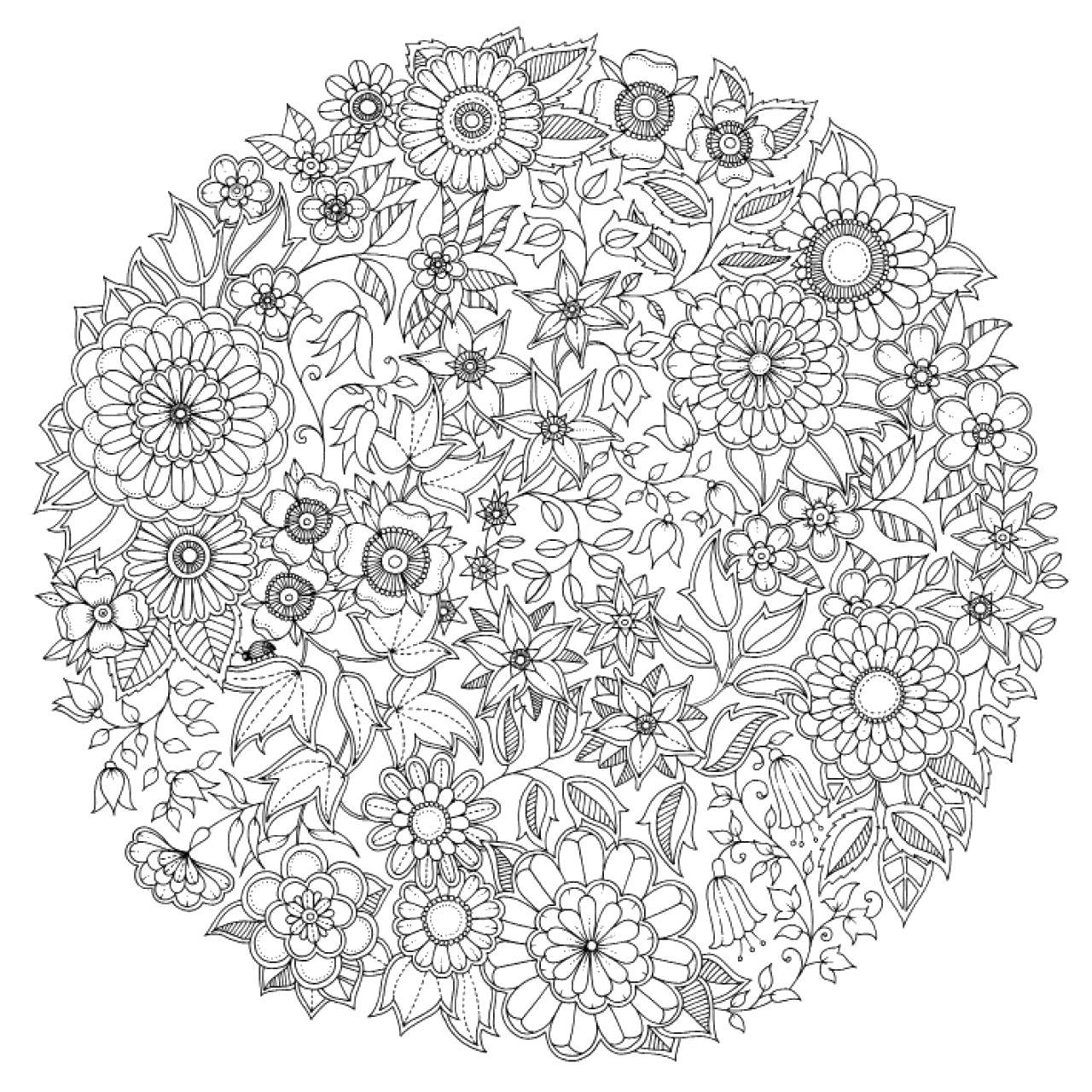 Раскраска  мандала из цветов. Скачать узоры, цветы, круглые, для взрослых.  Распечатать антистресс