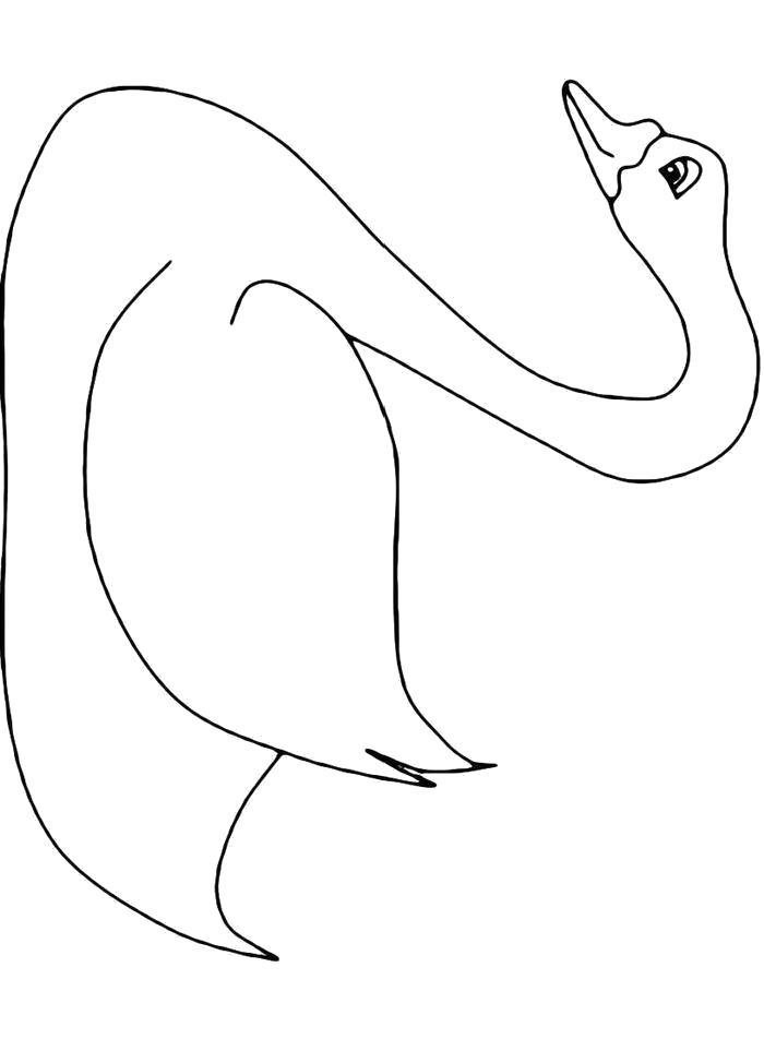 Раскраска лебедь для детей на белом фоне