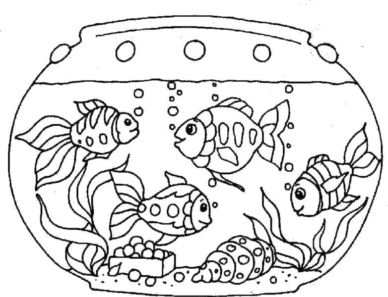 """Раскраска  """"аквариум"""" скачать и распечатать бесплатно. Скачать Аквариумные рыбы.  Распечатать Аквариумные рыбы"""