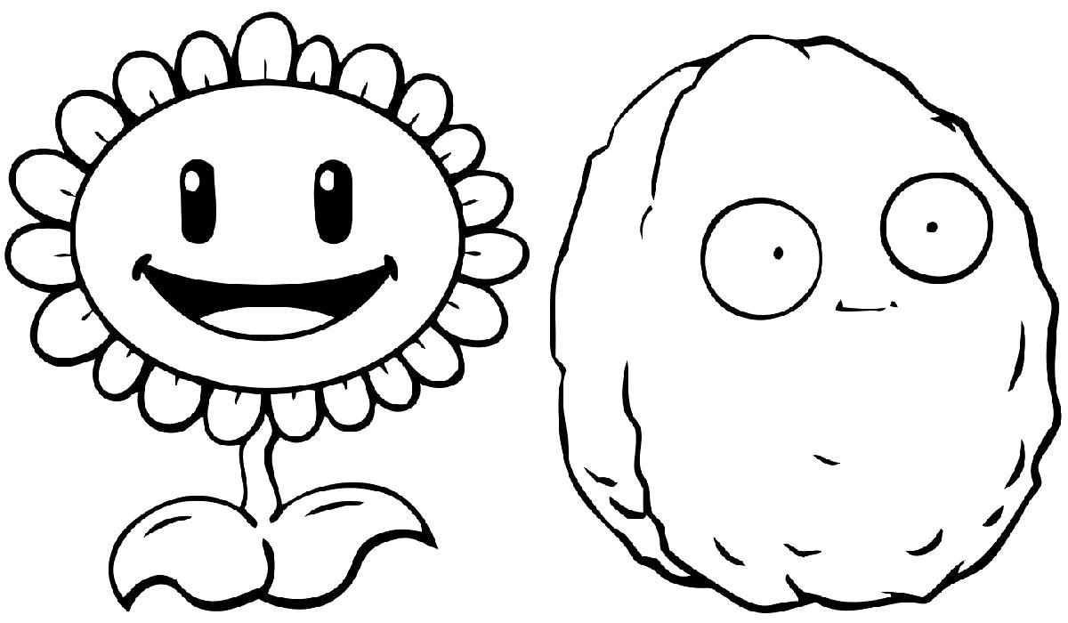 Раскраска Подсолнух. Орех. Скачать Зомби против растений.  Распечатать Зомби против растений