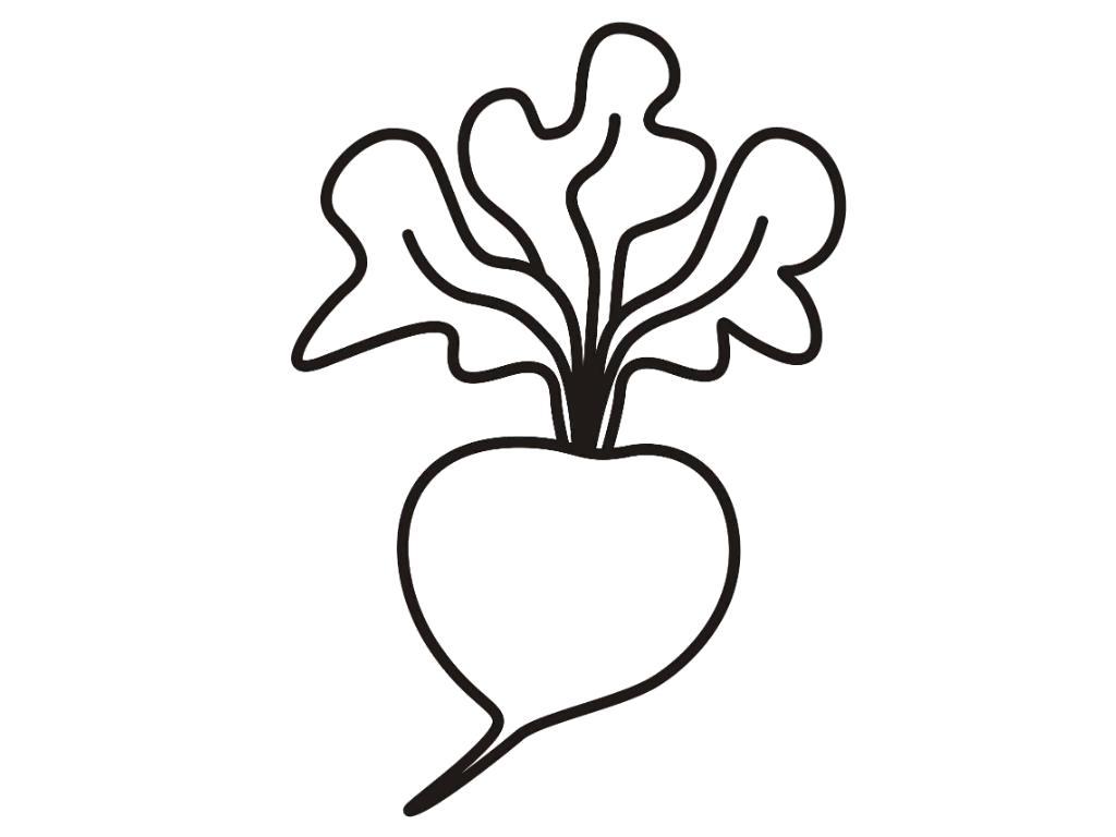Раскраска редис. овощи
