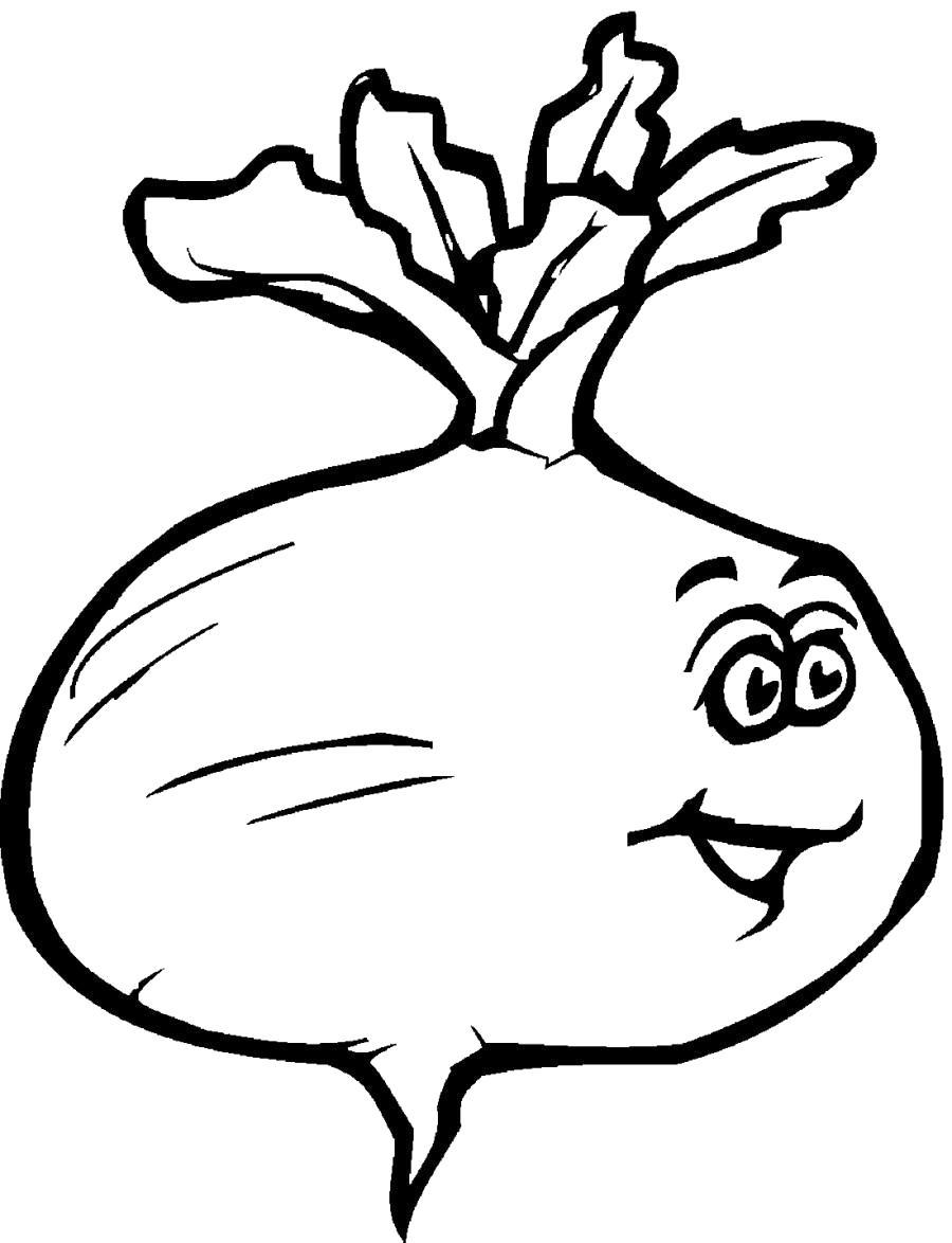 Раскраски овощи, Скачать много раскрасок.