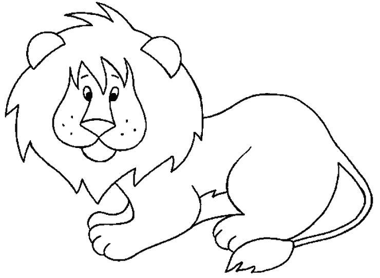 Раскраска Лев. Дикие животные