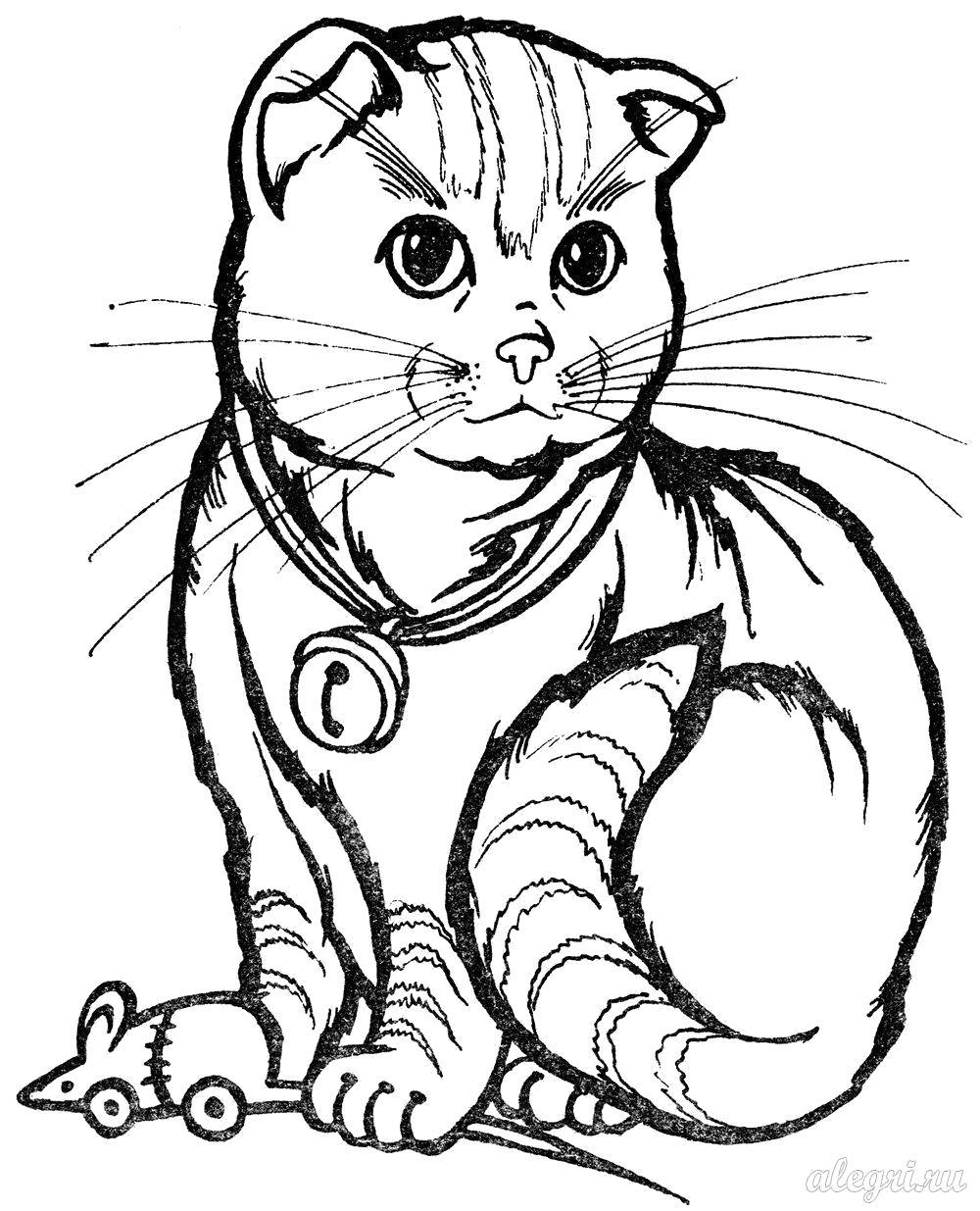 Раскраска  для детей. Кошка. Скачать кошка.  Распечатать Домашние животные