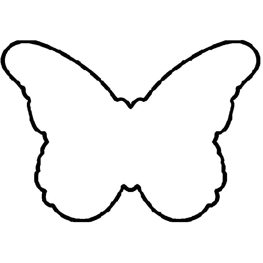 Раскраска контур бабочки. Бабочки
