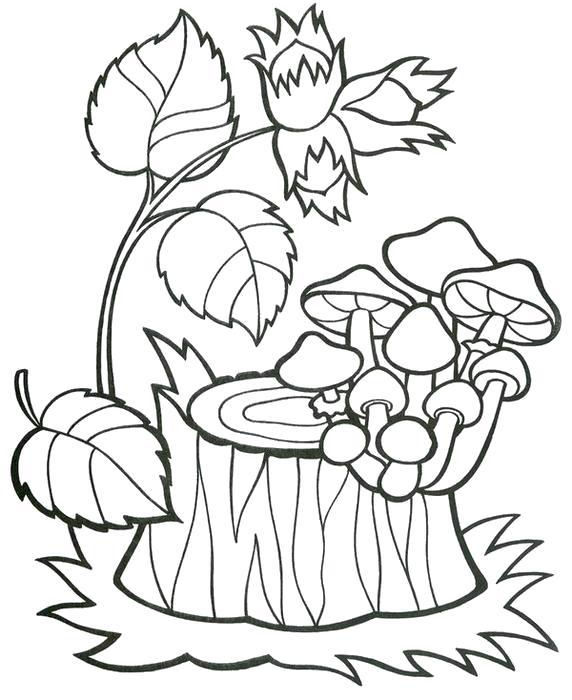 Раскраски грибы, Страница:5.