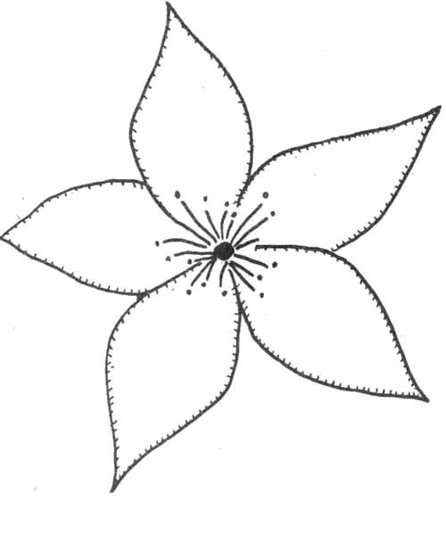Раскраска  Цветы шаблоны для вырезания . Скачать цветы.  Распечатать растения