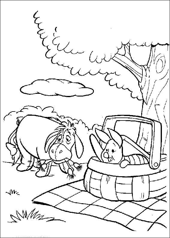 Раскраска Пикник. Винни Пух