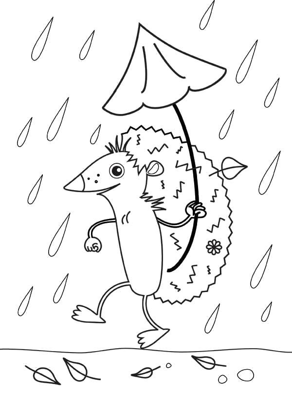 Раскраска Осенний дождь и ежик. Осень