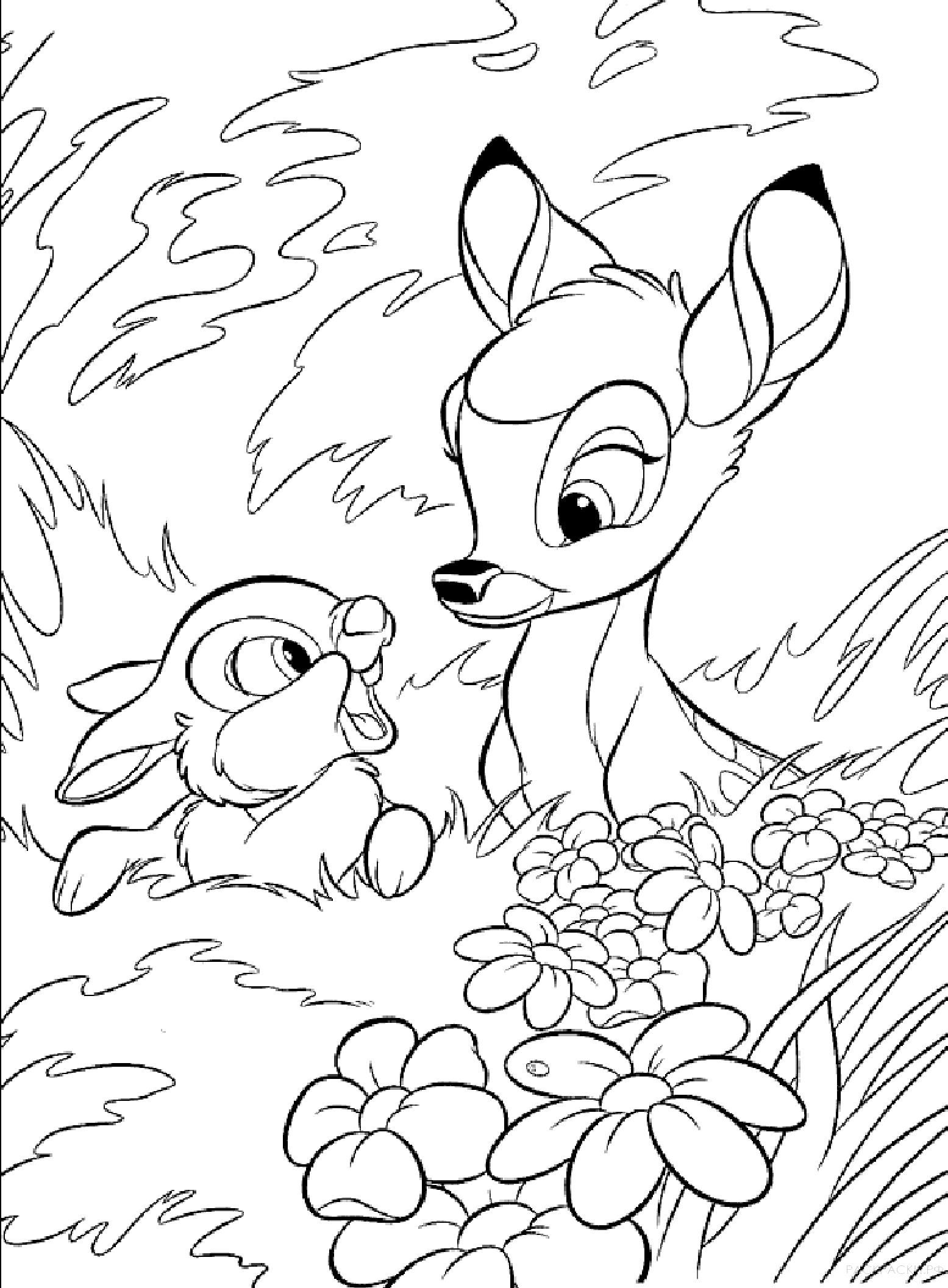 Раскраска  для девочек Кролик и оленёнок. Скачать Кролик.  Распечатать Кролик