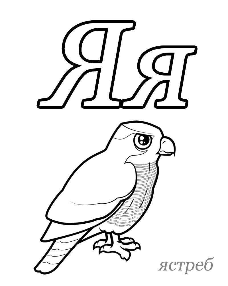 Раскраска Русский алфавит,  Буква Я, Ястреб. Азбука