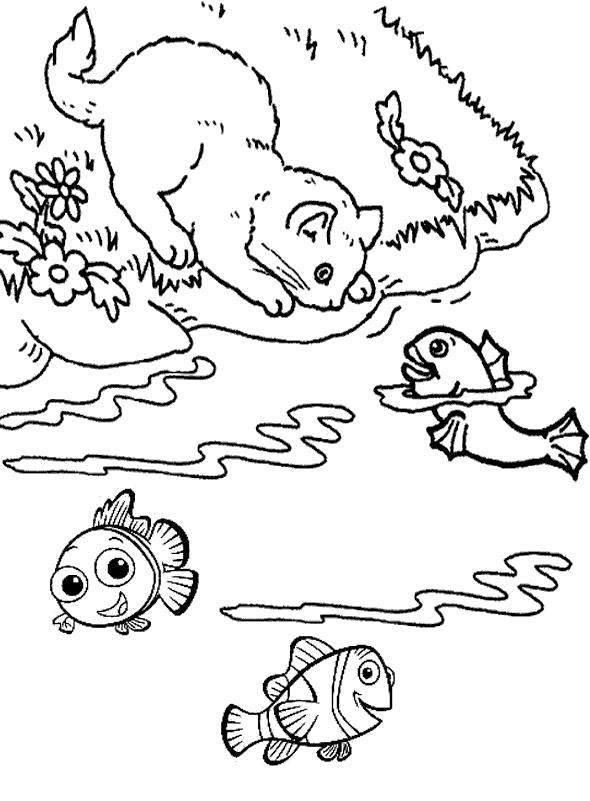 Раскраска Следит за рыбкой. Домашние животные