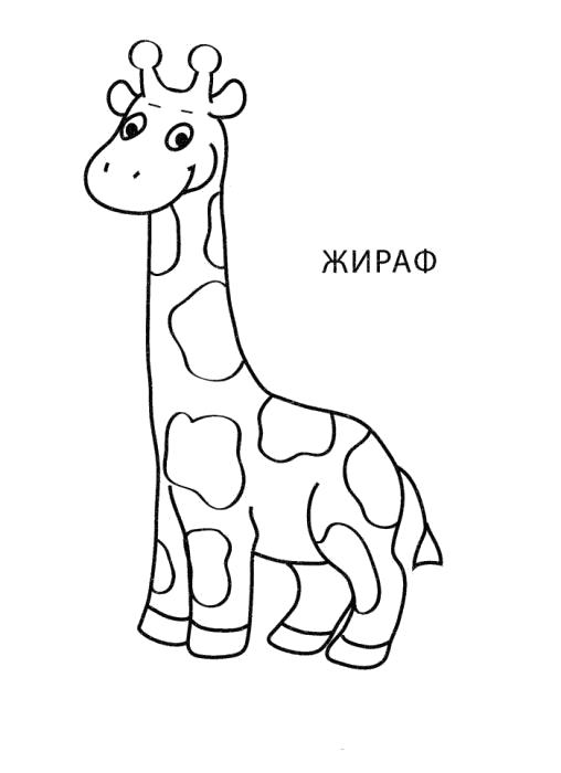 Раскраска . жираф