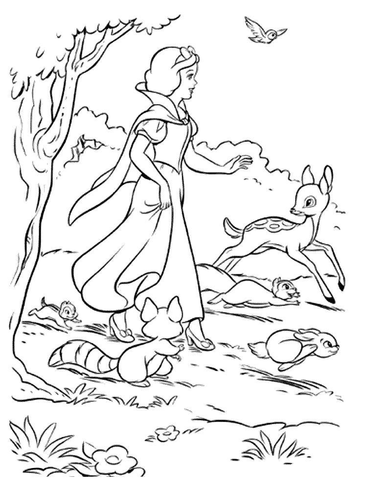 Раскраска  Белоснежка и 7 гномов- друзья звери.