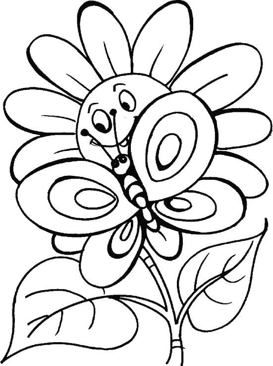 Название: Раскраска Бабочка и ромашка. Категория: Насекомые. Теги: Бабочки.