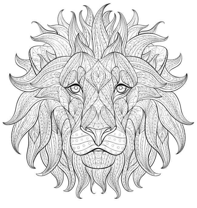 Раскраска Лев -  для взрослых. Антистресс. Скачать Лев.  Распечатать Дикие животные
