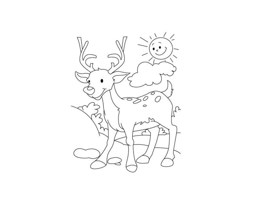 Раскраски олень, Раскраска животные шаблоны олень контур ...