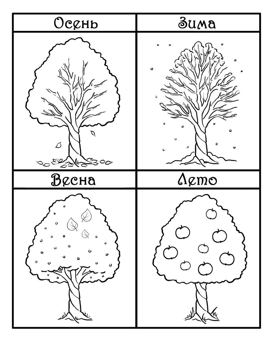 Раскраска Яблоня в разное время года. деревья