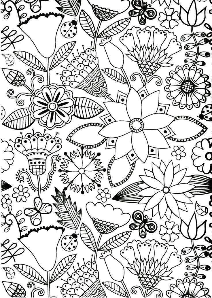 Раскраска Цветы. антистресс